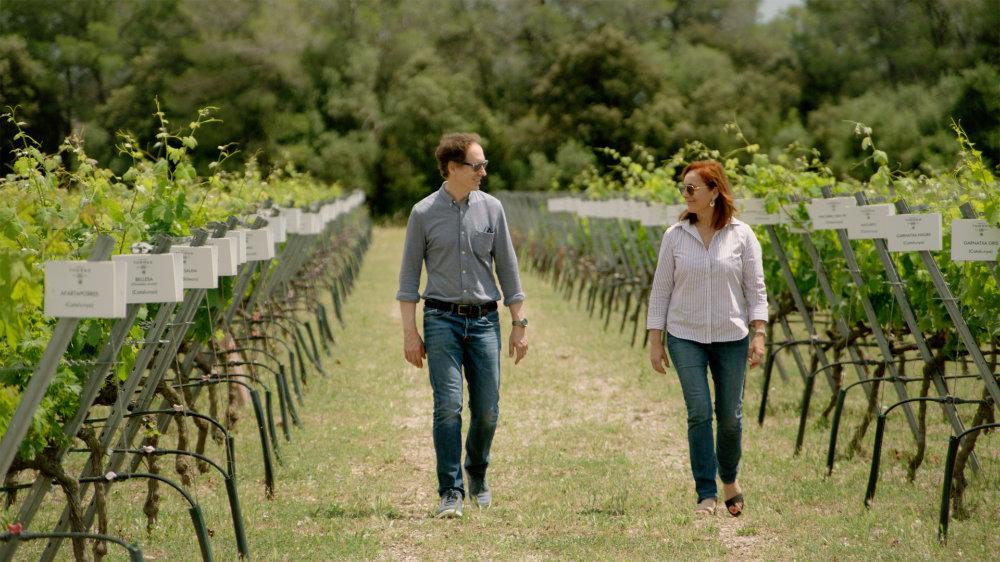 wms3 penedes torres next generation Wine Masters Update
